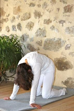 Majrasana_yogafleurdelotus